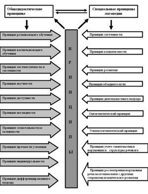 Логопедические принципы в таблицах и схемах