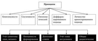 Принципы логопедической работы