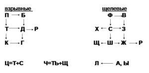 схема артикуляционно схожих звуков для постановки в логопедии