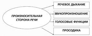Компоненты произносительной стороны речи