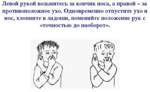 кинезеологические упражнения